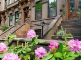 501 603 2 Brooklyn 2012 4.jpg