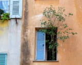 155 Place St Francois Nice.jpg