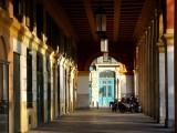 222 Nice le Port.jpg
