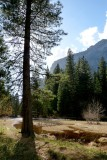 706 1 Yosemite Cooks Meadow.jpg