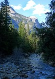 723 Yosemite Mirror Lake Trail Tenaya Creek 1.jpg