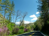 783 5 Road to Yosemite.jpg