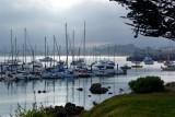 302 Monterey.jpg