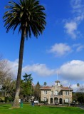 606 Sonoma.jpg