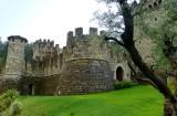 661 3 Castello di Amorosa 2014.jpg
