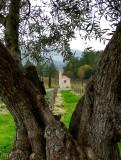674 1Castello di Amorosa.jpg