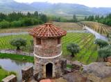 678 1 Castello di Amorosa 2014.jpg