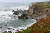 813 1 Sonoma coast 2014.jpg