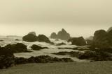 820 Sonoma Coast 2014.jpg