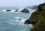 830 Mendocino coast 2014.jpg