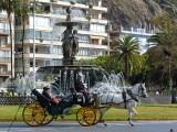 1196 Malaga Paseo del Parque.jpg