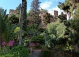1246 Malaga Alcazaba.jpg