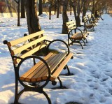 361 Roosevelt Island winter benches 2016.jpg