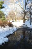 422 8 Central Park snow 2016 1.jpg