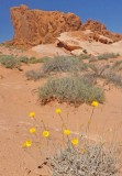 187 Valley of Fire State Park 8.jpg