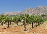 336 Monastery of Agia Triada Crete.jpg