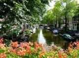 222 Jordaan, Amsterdam.jpg