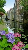 443 Delft.jpg