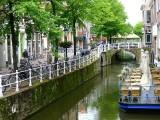 487 Delft.jpg