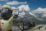 165 Zermatt 139.jpg