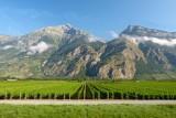 203 Montreux to Visp 020.jpg