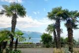 296 Montreux 237.jpg
