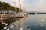 392 Lausanne 204.jpg