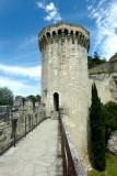 523 Avignon 273.jpg