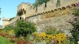 540 Avignon 105.jpg