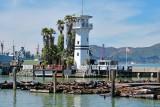 434 3 Forbes Island Pier 39 SF 2014.jpg