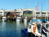 439 Fisherman's Wharf SF 2014 3.jpg
