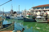 439 Fisherman's Wharf SF 2014 7.jpg