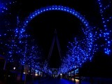 184 London Eye.jpg