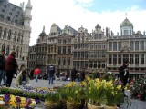 650 208 Brussels Grand Place.jpg