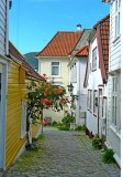 236 Bergen.jpg