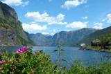 297 Aurlandsfjord Norway in a Nutshell.jpg