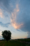 Blue And Pink Clouds
