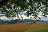 Eastern Roztocze Landscape