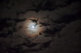 Harvest Moon With Clouds And Halo