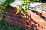 Shadows On A Brick Wall