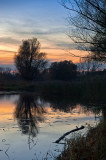 Sunset At The Pond
