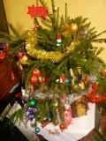 My Small Christmas Tree