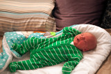 Maurycy Is Ten Days Old