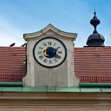 Clock And Pigeons