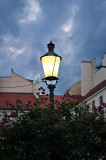 Lantern At Dusk With Flowers