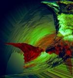 Warrior Sparrow