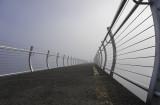 Cool Mist