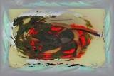 Distort 02 - African Queen Trumpet Vine - Campsis Radicans