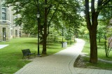 Philosopher's path @f5.6 A12