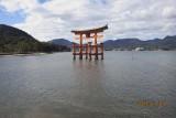 in Miyajima
